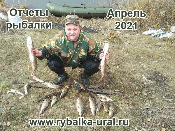 otchety_rybalki_04_2021_06.jpg